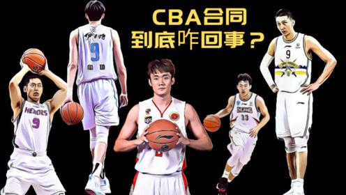 新赛季CBA球员的合同到底是怎么回事?