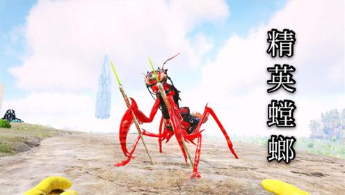 方舟灭绝05:驯服工具龙精英螳螂!
