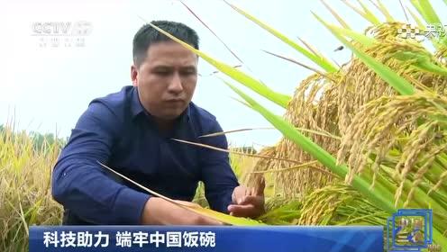 科技助力 端牢中国饭碗