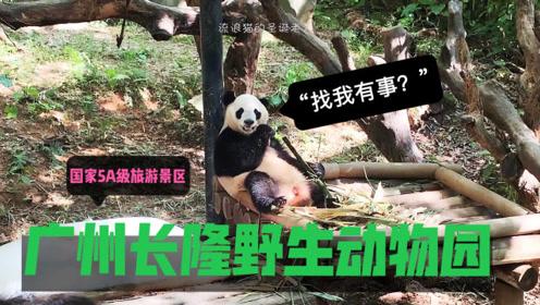 国家5A级旅游景区—广州长隆野生动物园(上集)