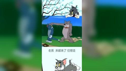 你这家伙不解风情,搞笑动漫配音猫和老鼠