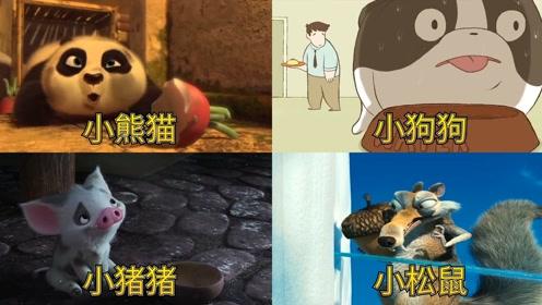 萌到你心里的可爱动物,小功夫熊最萌,小松鼠