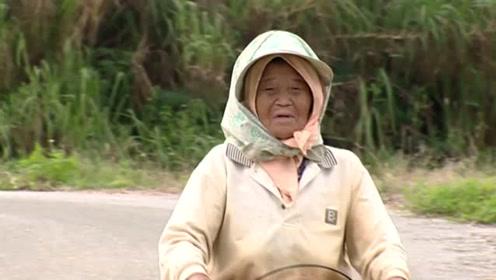 揭秘日本长寿了老人健康秘诀!探访日本老人真