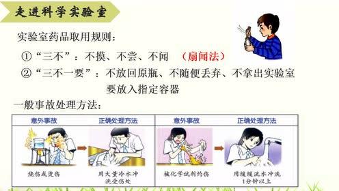 浙教版七年级科学下册
