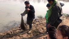 农村大叔撒网捕鱼,几小时的功夫捕到几十条,捕鱼高手啊