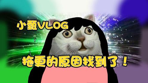 小甄vlog:断更的原因找到了!实在是迫不得已?