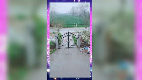让大家欣赏一下农村小院,我们三家的院子,各不相同