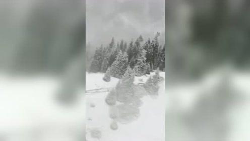 新疆昭苏迎首场秋雪:宛如童话世界!