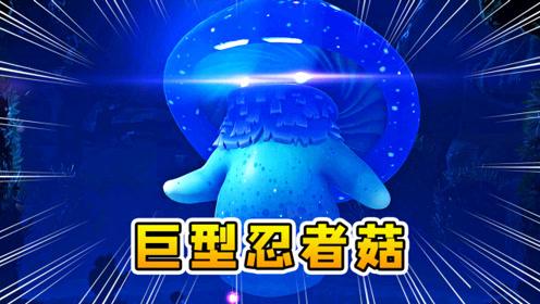 植物大战僵尸19:大家伙,超级巨型毒蘑菇,植物王国的头目