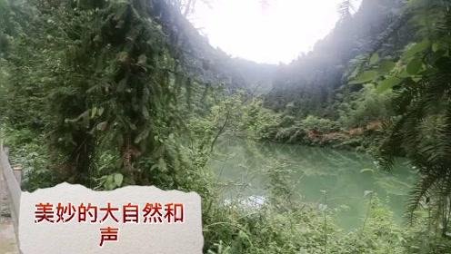神秘乡村之大自然歌声