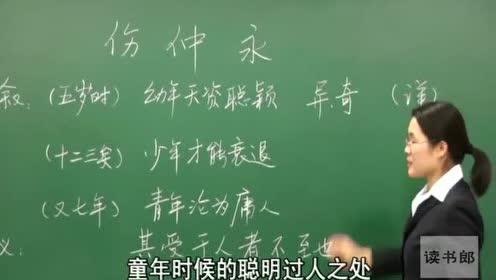 沪教版七年级语文上册4 伤仲永