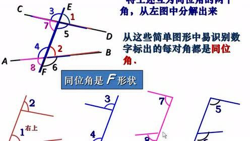 北师大版七年级数学下册第二章 相交线与平行线2.2 探索直线平行的条件