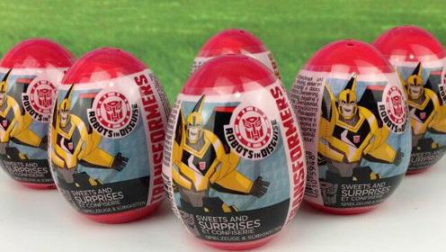 变形金刚4玩具蛋 大黄蜂奇趣蛋玩具视频