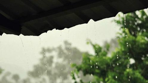 古琴曲欣赏《檐下雨意》弹奏:王先宏图片