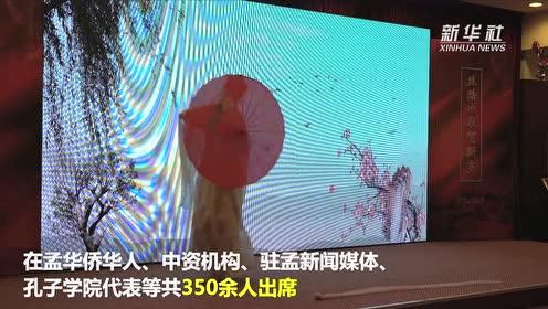 迎春节 孟加拉国华侨华人这样庆祝