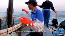 老广的味道:为了食材的新鲜,捕鱼人很早就出海了