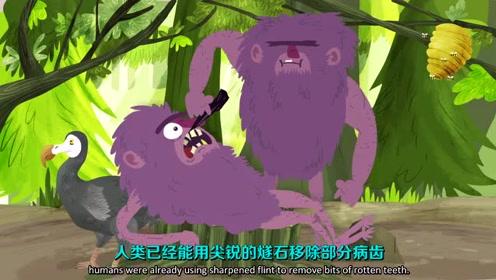 【TED-Ed】你为什么会长蛀牙?@柚子木字幕组