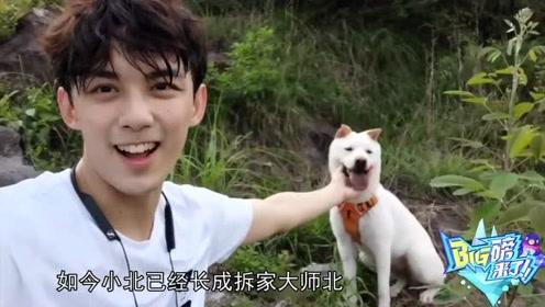 *ig磅来了,吴磊和宠物小北赛跑,一人一狗互动太温馨了!