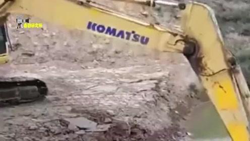 我见过人洗澡,也见过动物洗澡,头回看挖掘机