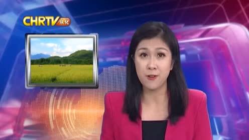 媒体聚焦  从化乡村游名片更亮丽