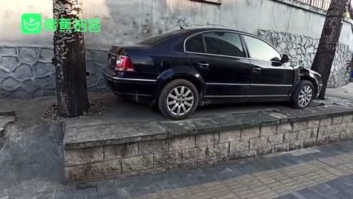 神停车!北京一汽车停半米高台阶上前后都是树 网友:用叉车叉进去的?