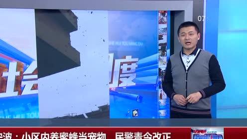 宁波浙江:小区内养民警当宠物蜜蜂责令改正v小区树杆上的蜜蜂图片