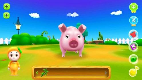 宝宝动物乐园 认识人类的好朋友可爱的小猪