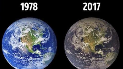 新教科版五年级科学上册三 地球表面及其变化