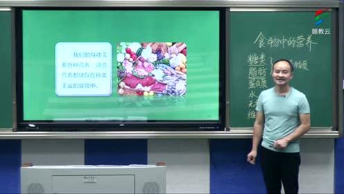 新教科版四年級科學上冊 第二單元 2.7 食物在口腔里的變化