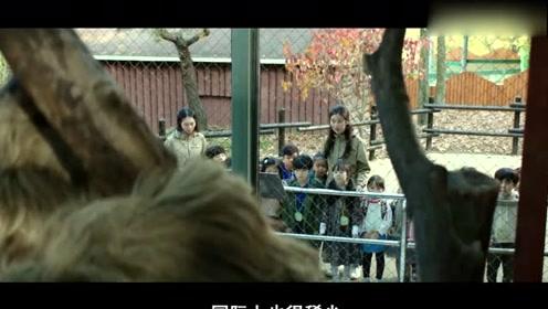 一个没有动物的动物园,饲养员伪装成动物,镜