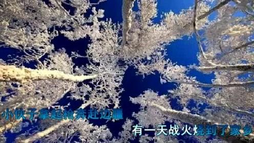 白桦林 - 朴树,一首经典感人动听的歌曲