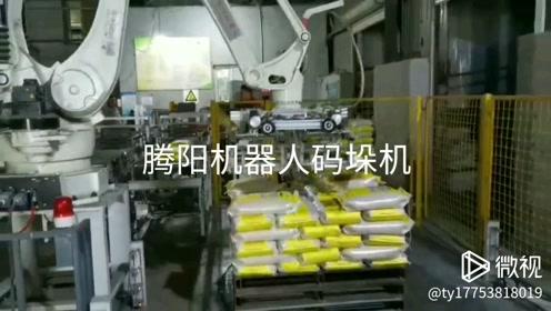 腾阳机器人码垛机,大米行业调试中#戏精上身的我#