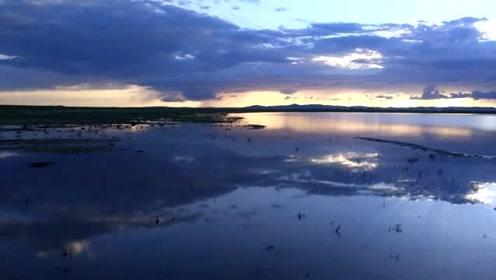 #夏日全民旅行记#,#七月避暑游#,呼伦贝尔也有一个天鹅湖@头条旅游