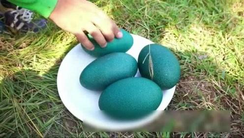 美食:价值100美元一只的蛋原来长这样,看着好环保呀,不忍心吃了!