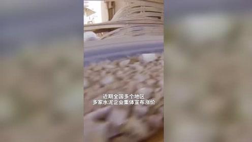 中国财富报道|连涨3个月,需求持续释放,这一行业有望大反转