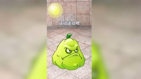 植物大战僵尸pvz搞笑轻漫计划豌豆射手动画窝瓜