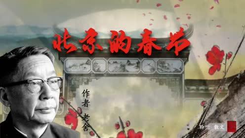 六年级语文下册1 北京的春节