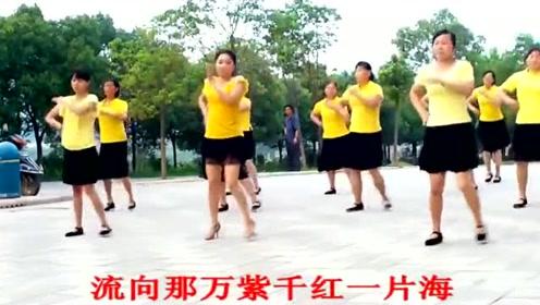 经典广场舞《最炫民族风》广场舞视频