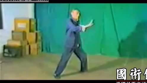 经典的赵堡太极拳老拳师练拳视频