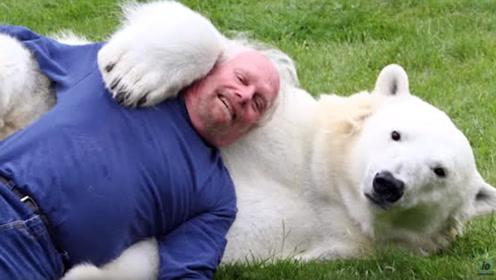 俄罗斯大叔养了一只北极熊,简直无人敢欺负,从此人生作文蚂蚁v大叔赢家280字图片