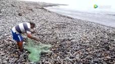 大叔撒网打鱼,海边浪很大,看看一网下去能收获多少斤