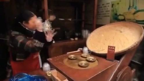 新西游记:韩国明星逛成都美食城,看得眼花缭乱,嘴巴基本没停过!