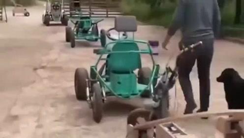 大哥你太有才了,自制了这么多车,不知道这能开得过来吗?