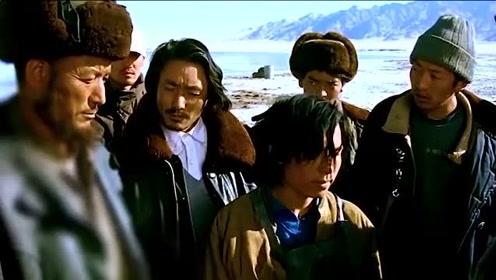 藏羚羊的每一张画面,每一帧视频都能刺痛人心,保护好野生动物