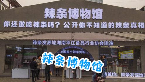 湖南首个辣条博物馆开馆,工业旅游会成为新趋势吗