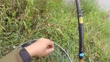 钓鱼:小伙用鱼饵来钓鱼,一个就几十斤真厉害