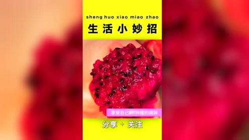 生活小窍门:最适合室内种植的水果,学到就是
