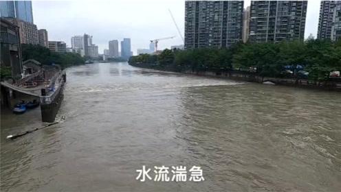 四川成都暴雨持续市民们看海,今天府南河洪水暴涨河床将满