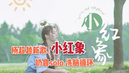 杨超越新歌《小红象》,作词居然是鲁迅!超火翻唱与原唱的较量!