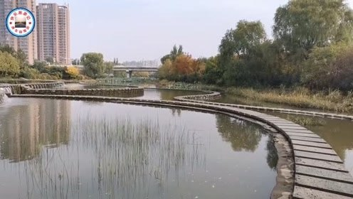 美丽的辉发河湿地公园